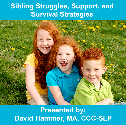 Sibling Webinar Graphic