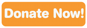 Donate Now Orange Button